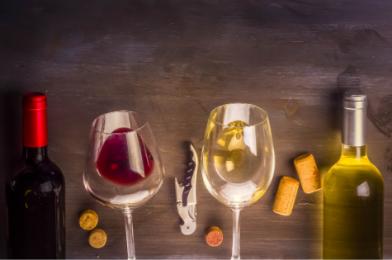 15  kníh o víne